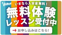 banner_lesson